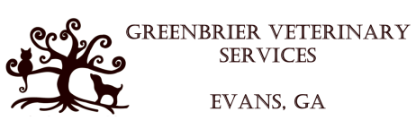 Greenbrier Veterinary Services | Vet Clinic | Evans GA | Augusta GA